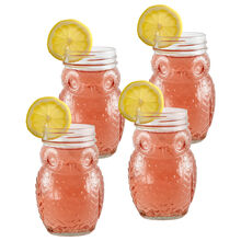 Set of 4 Owl Glass Mason Jars
