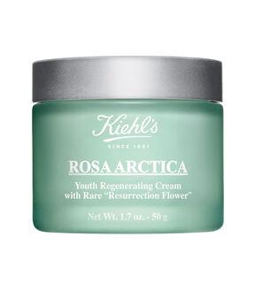 Rosa Arctica, , large