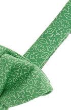 Leaf & Acorn Bow Tie