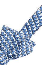 Hummingbird Bow Tie