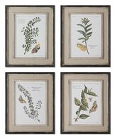 Uttermost Butterfly Plants Framed Art, S/4