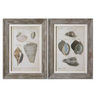 Uttermost Vintage Shell Study Framed Art, S/2