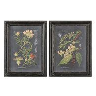 Uttermost Midnight Botanicals Wall Art S/2