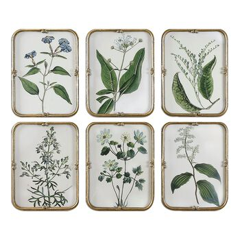 Uttermost Blue Floral Art Collection S/6