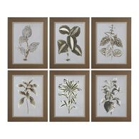 Uttermost Verigated Plant Prints S/6