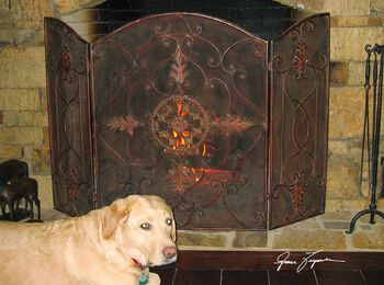 Uttermost Egan Wrought Iron Fireplace Screen