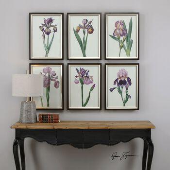 Uttermost Iris Beauties Floral Prints S/6