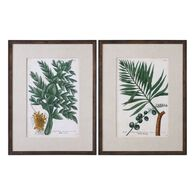 Uttermost Vintage Tropicals Floral Prints S/2