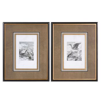 Uttermost Antique Birds Framed Art, S/2