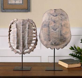Uttermost Turtle Shells, S/2