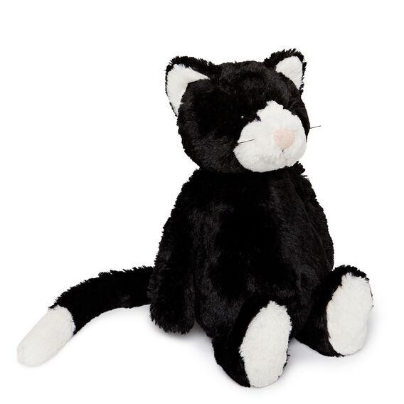 Bashful Black and White Cat