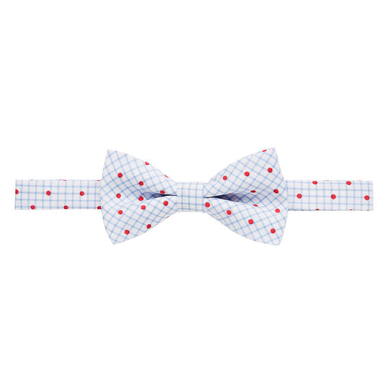 Grid & Red Spot Bow Tie