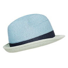 Colour Block Fedora