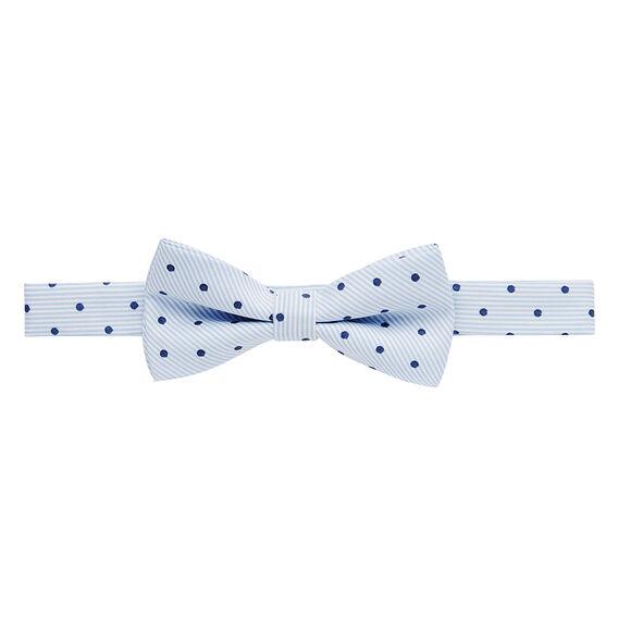 Stripe Navy Spot Bow Tie