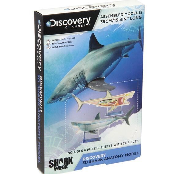 3D Shark Model