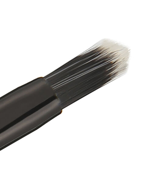 Retractable Lip Brush