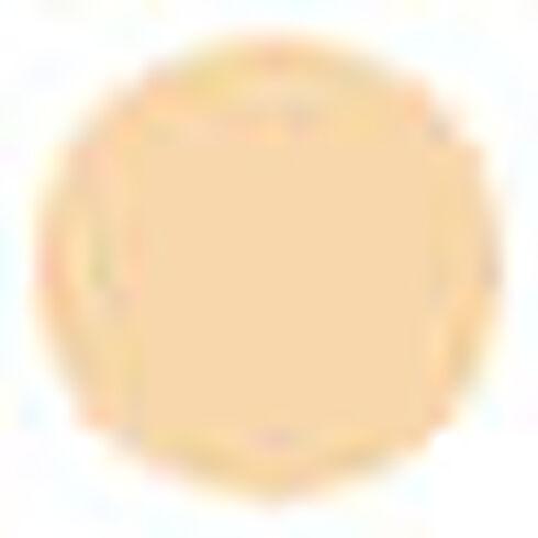 Lancome Lancôme® Poudre Majeur Light Compact Powder Translucent