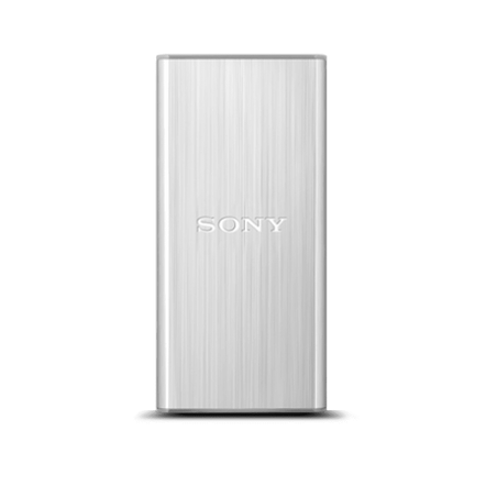 256GB USB 3.0 External Solid State Drive (Silver)