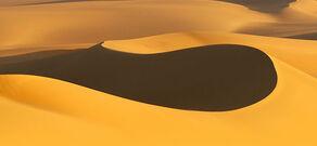 La sfilata Sahara