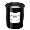Les Exceptions - Fougere Furieuse Scented Candle