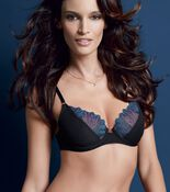 SPLENDID ESSENCE Wired padded bra