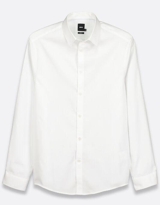 Chemise homme regular coton premium