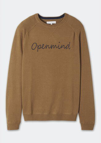 "Pull ""Openmind"""