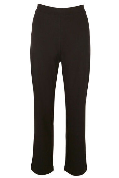 Yoga Pant Regular Length