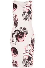 Floral Stretch Shift Dress