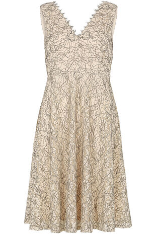 Lace Scalloped Edge Dress