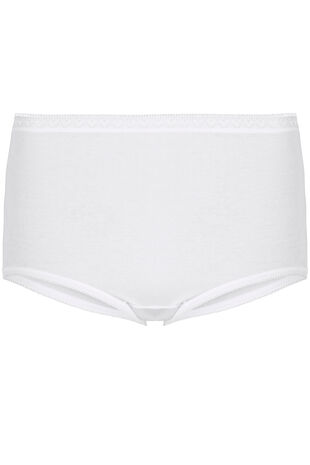 Three Pack Maxi Briefs