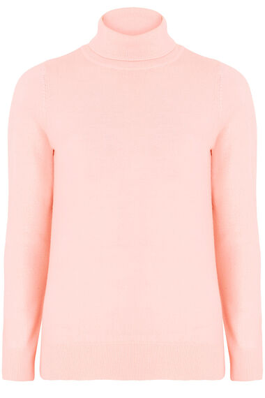 Supersoft Roll Neck Jumper