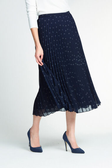Pleated Chiffon Printed Skirt