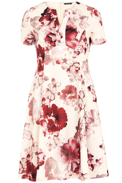 Signature Printed Fit and Flare Dress