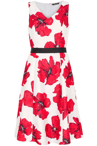 Signature Poppy Print Dress