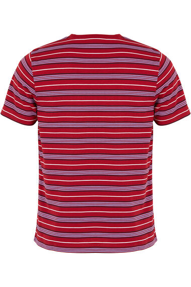Red And Navy Striped T-Shirt