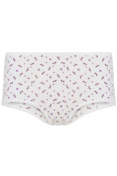5 Pack Dragonfly Print Full Briefs