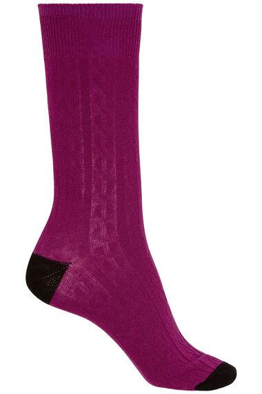 3 Pack Scottie Dog Printed Sock