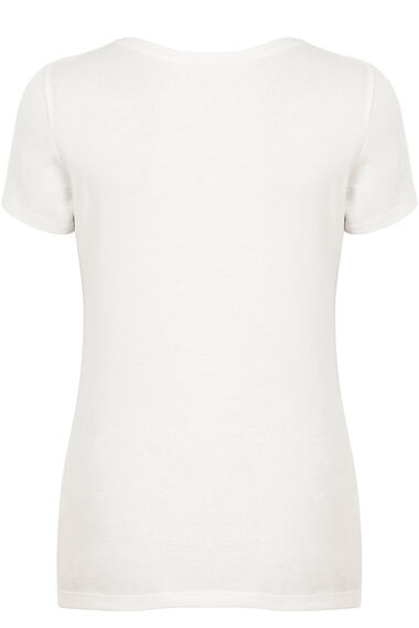 Pure Cotton V Neck T-Shirt