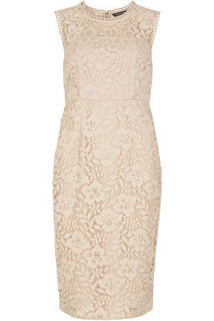 Signature Lace Shift Dress
