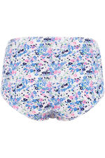 Five Pack Busy Floral Briefs