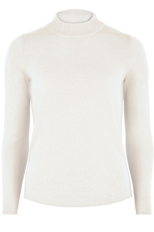 Supersoft Turtle Neck Jumper