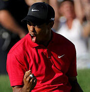 OnlineGolf News: Tiger's new sponsor is a curious choice
