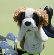 "OnlineGolf News: McIlroy: ""I named my first dog Ernie"""