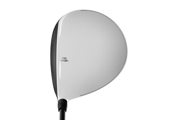 Cobra King F6 Plus White Grp 1