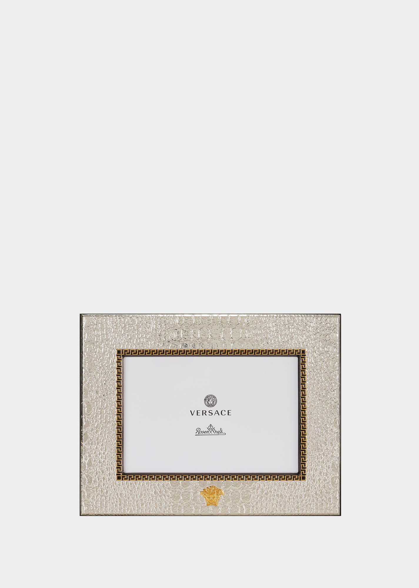 gold and silver 4 x 6 frame versace frames