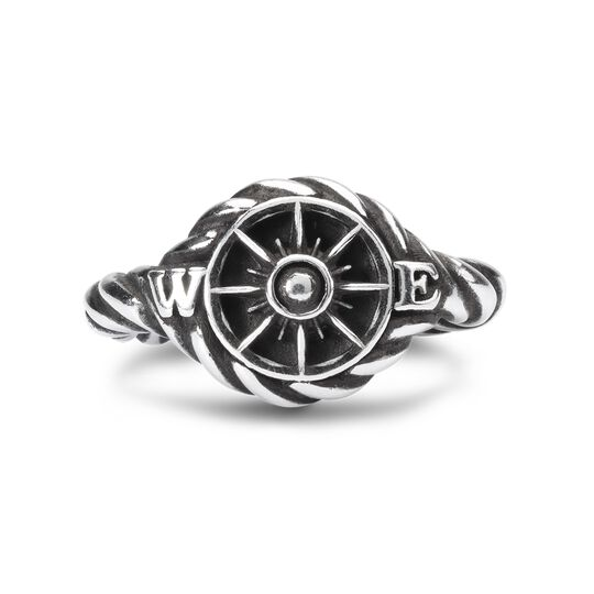 Compass, Single Silver Link