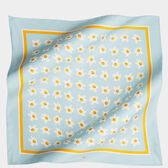 Eggs Large Silk Scarf