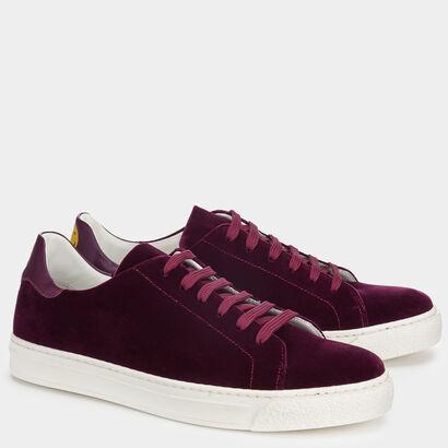 Velvet Wink Tennis Shoe