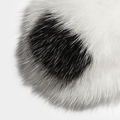Eyes Fur Sticker